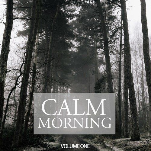 VA - Calm Morning Vol.1 (Wonderful Melodic & Relaxing Tunes For Chilled Morning Moods) (2017) Full Album