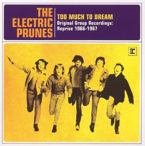 The Electric Prunes - Too Much to Dream: Original Group Recordings Reprise 1966-1967 (2007) Lossless