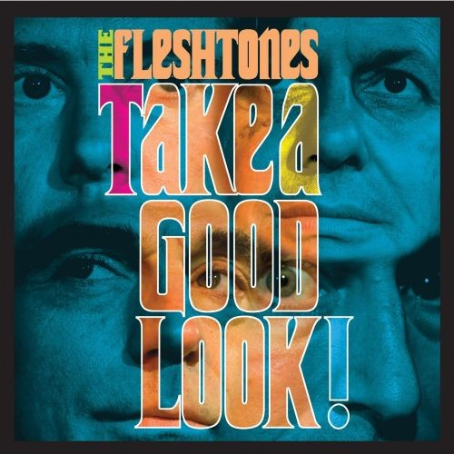 The Fleshtones - Take A Good Look (2007)