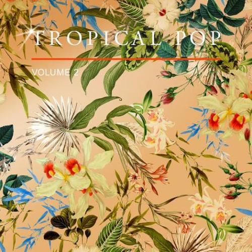Various Artists - Tropical Pop Vol. 2 (2018) Full Album